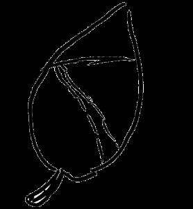 logo_ObsthainGruenerWeg