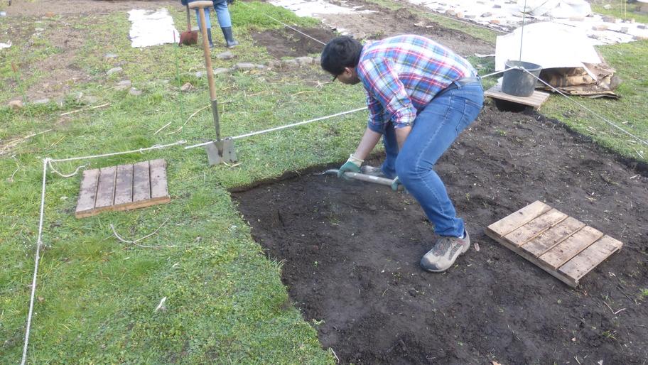 Vatsal sticht mit einem Spaten eine Grassode aus und befreit dabei die künftige Gewähshausfläche von Gras.