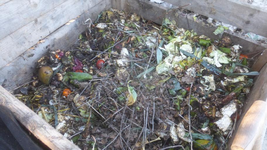 Mit Hilfe unserer Muskeln verkleinern wir die Bioabfälle. Das führt dazu, dass die Mikroorganismen schneller Kompost herstellen.