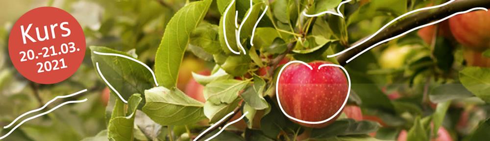 Die alte Kunst der Obstbaumveredelung - Kurs am 20. und 21. März 2021